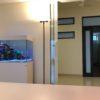 渋谷区 個人事務所 w900海水魚水槽 – TOJOMEDIA